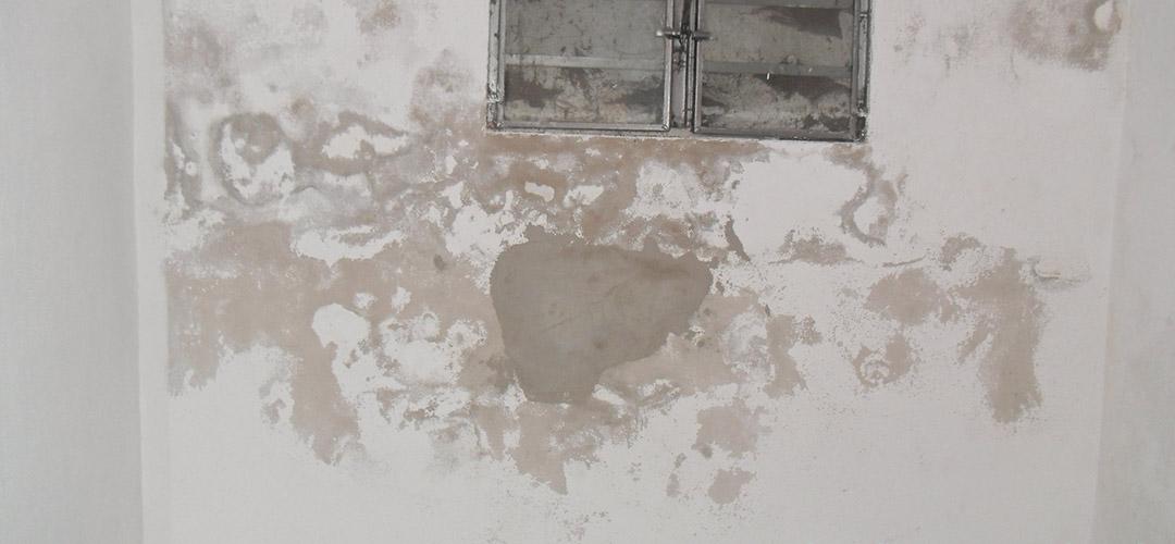 Folgen eines verschmutzten Lichtschachtes am Kellerfenster…
